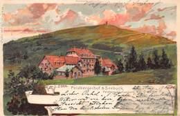 FELDBERG GERMANY~FELDBERGERHOF & SEEBUCK~L ZORN KUSTSLER ARTIST 1901 FR. SCHMIDT POSTCARD 40490 - Feldberg
