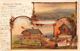 KANDEL Bei WALDKIRCH GERMANY-TOMAS HUTTE-MAX BAUER 1243 M U.d. MEER KUNTSLER 1901 POSTCARD 40493 - Kandel