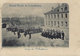 Grand-Duché De Luxembourg   Corps Des Volontaires  Photo Charles Bernhoeft,Luxembourg - Cartes Postales