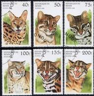 BENIN - Félins - Big Cats (cats Of Prey)