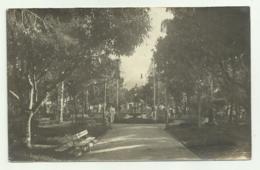 SCARIO - IL GIARDINO 1922 FOTOGRAFICA  VIAGGIATA FP - Salerno