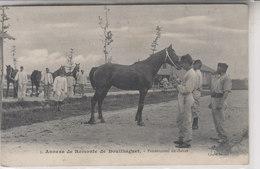 ANNEXE DE REMONTE DE BOUILHAGUET    PRESENTATION DU CHEVAL - France