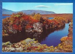 Island; Pingvellir - Island