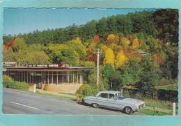 Small Post Card Of Kallista,The Dandenongs,Melbourne, Victoria, Australia,V79. - Melbourne