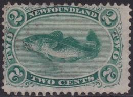 Newfoundland       .   SG  .      25    .   O      .   Cancelled     .   /    .    Gebruikt - Newfoundland