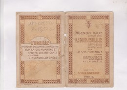 CALENDRIER 1903 ASSURANCES L ABEILLE (en 2 Volets) - Calendars