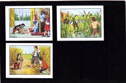 Lot 3 Images, Le Chat Botté, Editions Educatives, Scolaire, Illustrateur Calvet-Rogniat - Vieux Papiers