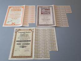 3 Actions Et Parts Sociales Compagnie Foncière Des Grands Lacs Et PERFECTA 1944  & - Industrial
