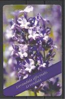 Hungary, Pharmacy Ad, Lavandula Officinalis, 2017. - Calendars