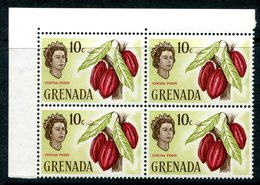 Grenada 1966 Pictorial Definitive - 10c Cocoa Pods Block Of 4 MNH (SG 237) - Grenada (...-1974)