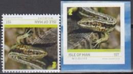 Isle Of Man 2019 (MNH) - Common Lizard (Lacerta Vivipara) - Autres