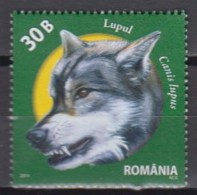 Romania 2011 (MNH) - Mi 6542:  Wolf (Canis Lupus) - Chiens