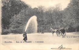 Brussel Bruxelles   Bois De La Cambre Ter Kamer Bos L'arroseur    De Begieter Waterman Het Gras Water Geven     I 6065 - Avenues, Boulevards