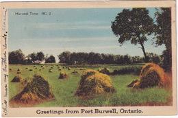 Port Burwell - Harvest Time  RC.2 -  (Ontario, Canada) - 1944 - Ontario