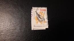 2006 Birds - Bielorussia
