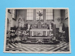 HYNSDAELE Prov. Sanatorium - Sanctuaire ( Pessemier ) Anno 19?? ( Zie/voir Photo ) ! - Renaix - Ronse