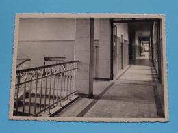 HYNSDAELE Prov. Sanatorium - Corridor / Gang ( Thill ) Anno 19?? ( Zie/voir Photo ) ! - Renaix - Ronse
