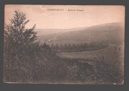 Herbeumont - Route De Conques - Herbeumont