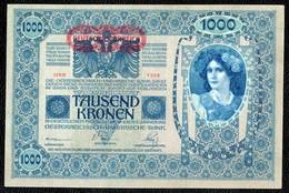 1000 AUTRICHE HONGRIE 1902 AUNC - Autriche