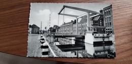 Ninove Denderbrug Pont Sur La Dendre - Ninove