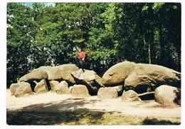 HUN-5   BORGER : DOLMEN, Hunnebed, Menhir - Dolmen & Menhirs