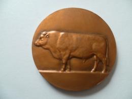 Médaille Offert Par Mr Robert LIOT Sénateur  (j.h. Coeffin) - Unclassified