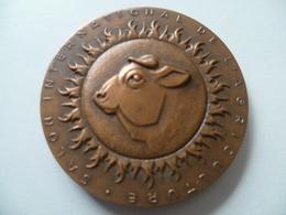Médaille Salon Internationale De L'agriculture Concours Générale Agricole Paris 1967 ( R.a. Baron) - Unclassified