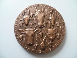 Médaille Concours Générale Agricole Paris 1974 Salon International De L'agriculture - France