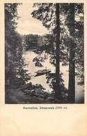 MUMMELSEE SCHWARZWALD MAN IN BOAT-L SCHALLER 1909 PHOTO POSTCARD 40501 - Germany