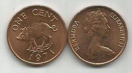 Bermuda 1 Cent 1971. - Bermudas