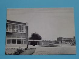 WAREMME Institut Provincial / Internat Externat - Rue De SELYS () Anno 19?? ( Zie/voir Photo ) ! - Borgworm