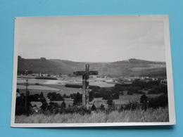 AMBERLOUP Point De Vue ( Carte Photo ) Anno 19?? ( Zie/voir Photo ) ! - Sainte-Ode