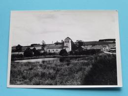 AMBERLOUP L'Eglise ( Carte Photo ) Anno 19?? ( Zie/voir Photo ) ! - Sainte-Ode