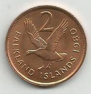 Falkland Islands 2 Pence 1980. - Malvinas