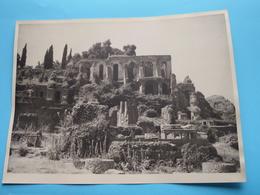 ROME Forum Et Palatin / Italy ( Format Photo 23,5 X 17,5 Cm. ) Anno 1951 ( Zie/Voir/See Photo ) ! - Lugares