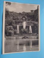 TIVOLI Villa D'Este / Italy ( Format Photo 23,5 X 17,5 Cm. ) Anno 1951 ( Zie/Voir/See Photo ) ! - Lugares