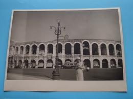 Verone VERONA Arena / Italy ( Format Photo 23,5 X 17,5 Cm. ) Anno 1952 ( Zie/Voir/See Photo ) ! - Lieux