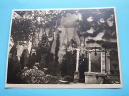 VERONA La Cour Sombre Di Giulietta / Italy ( Format Photo 23,5 X 17,5 Cm. ) Anno 1952 ( Zie/Voir/See Photo ) ! - Lieux