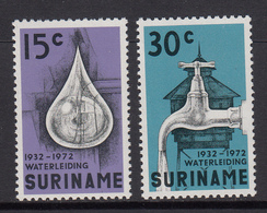 Suriname MNH NVPH Nr 616/17 From 1971 / Catw 1.50 EUR - Suriname