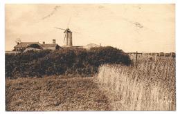 ILE DE NOIRMOUTIER - Vieux Moulin Vers L'Herbaudière - Ile De Noirmoutier