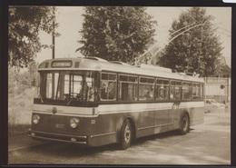 Eisenbahn Foto Ansichtskarte Trolleybus 33 TF Tram Fribourg Linie 8 Georges  - Schienenverkehr