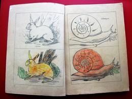 1920 Jean Cousin Petite Méthode élémentaire De Dessin Linéaire à Colorier Conformément Circulaire Ministériel 10-10-1880 - Autres Collections