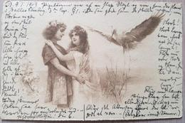 Germany 1903 Stork Storch - Non Classificati