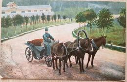 Germany Feldpost 1917 Schallmeßtrupp - Non Classificati