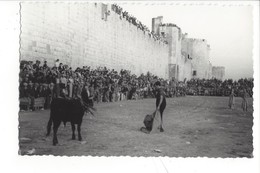 21976 - Carte Photo Corrida Aigues-Mortes  Fête Locale Au Pied Des Remparts Gard Photo Clarien - Corrida