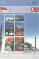 Indonesia, 2008, Indonesia-Turkey Joint Stamp Issue, MNH** - Indonesia