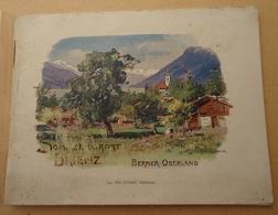 SUISSE - Dépliant Touristique - Brienz - Berner Oberland - Oberland Bernois - Sans Date - Svizzera