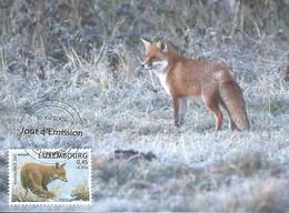 10.12.2002  -  Le Renard   Der Fuchs   De Fuuss   Photo Marc Weis - Cartes Maximum