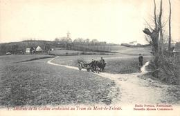 Descente De La Colline Conduisant Au Tram Du Mont De Trinité - Tournai - Attelage De Boeufs - Tournai