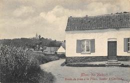 Mont Saint-Aubert - Route Du Tram à La Place. Sentier à Cailloux - Tournai